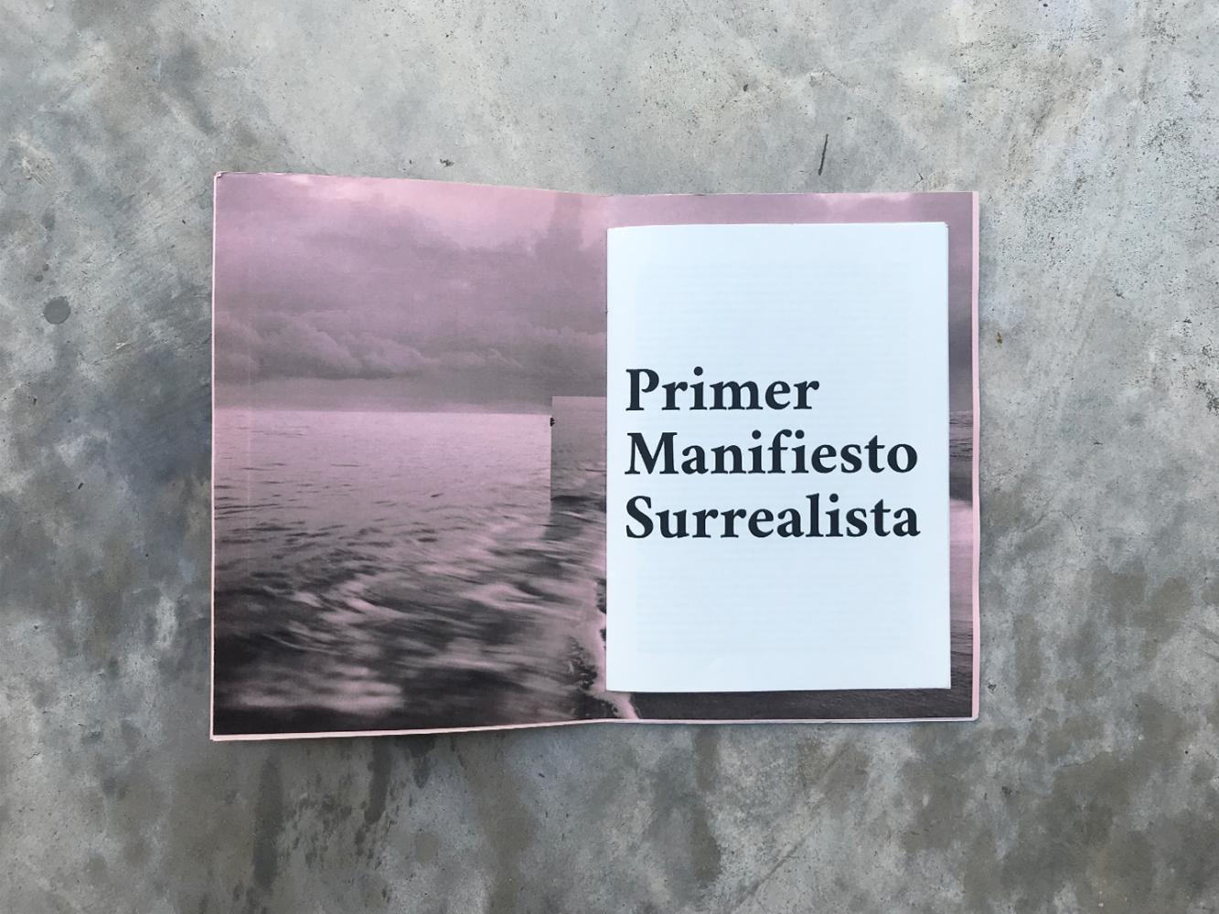Barbara Diaz Elverdin - Manifiesto Surrealista 04