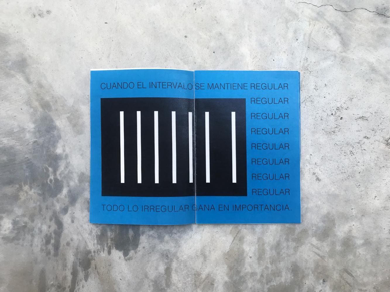 Seoane Valentina - Manifiesto del Arte Conceptual 04